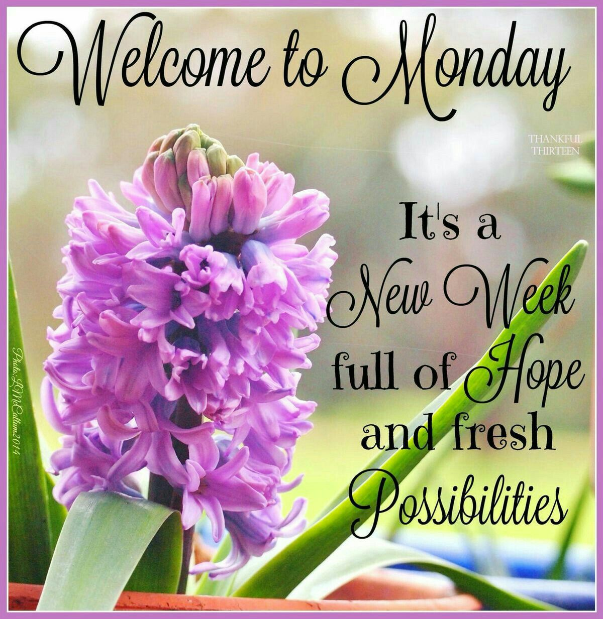 Good Morning Weekday Monday Pinterest Mondays Blessings And