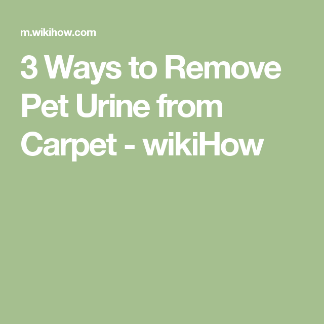3 Ways to Remove Pet Urine from Carpet - wikiHow
