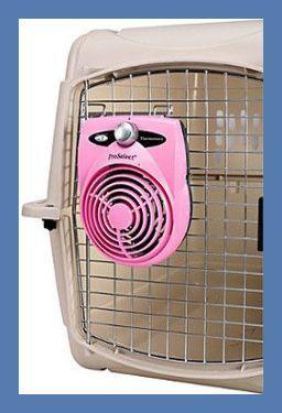 Photo of Cómo elegir una caja de perro »Wiki Ùtil Dog Crate Ideas Portable »Wiki Ùtil Muebles para cajas de perros | Muebles para jaulas …