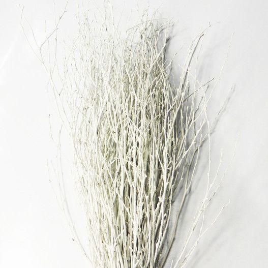 Branche De Decoration: Botte De 50 Branches De Bouleau ColoréesBlanc