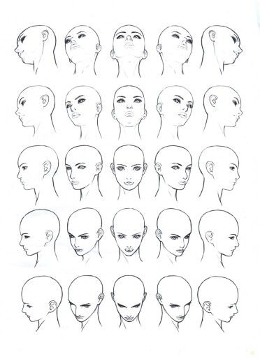Female Head Diagram Angle References Face Angles Body Drawing Human Body Drawing