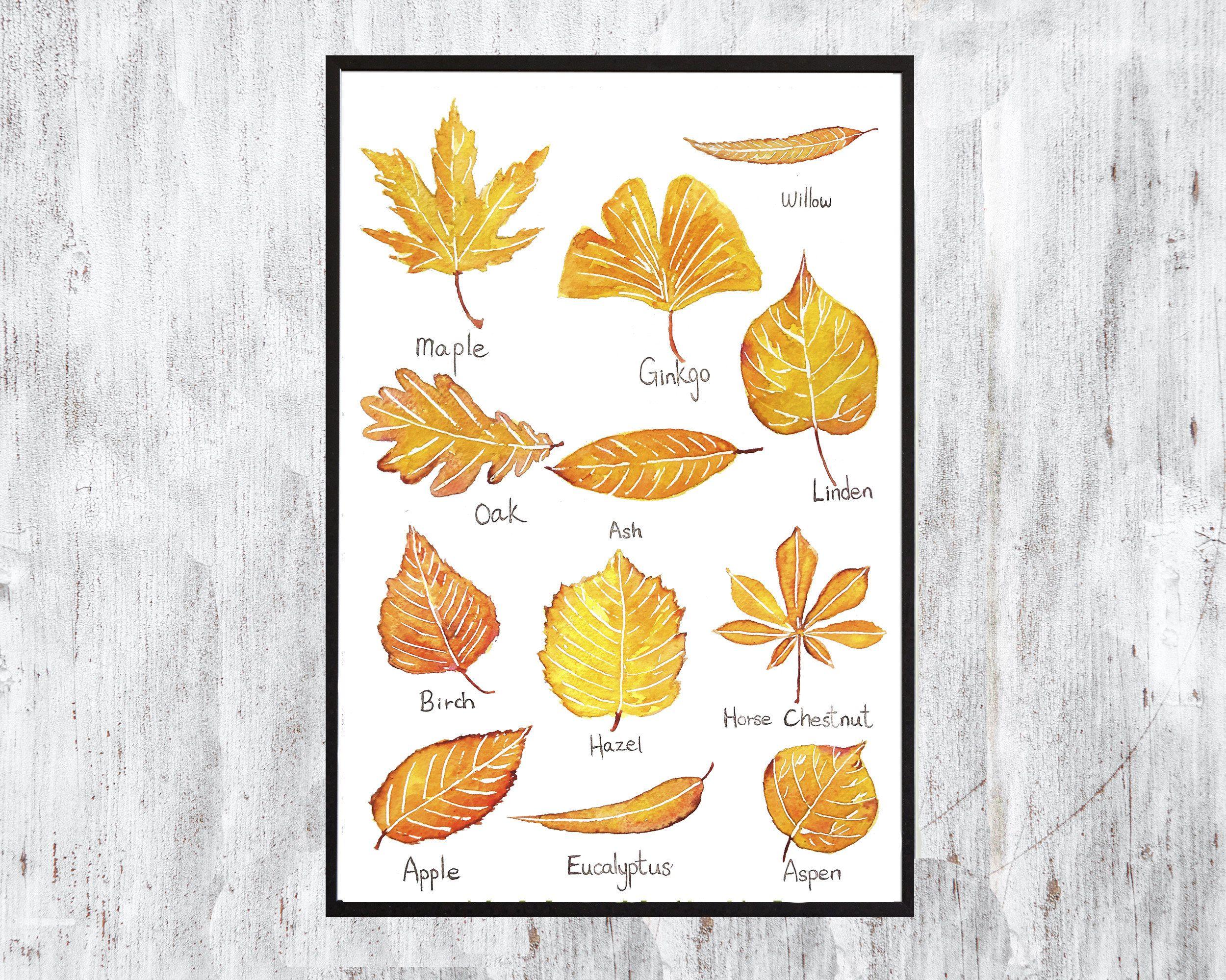 Vintage Botanical Print Watercolor Print yellow leaf autumn art home ...