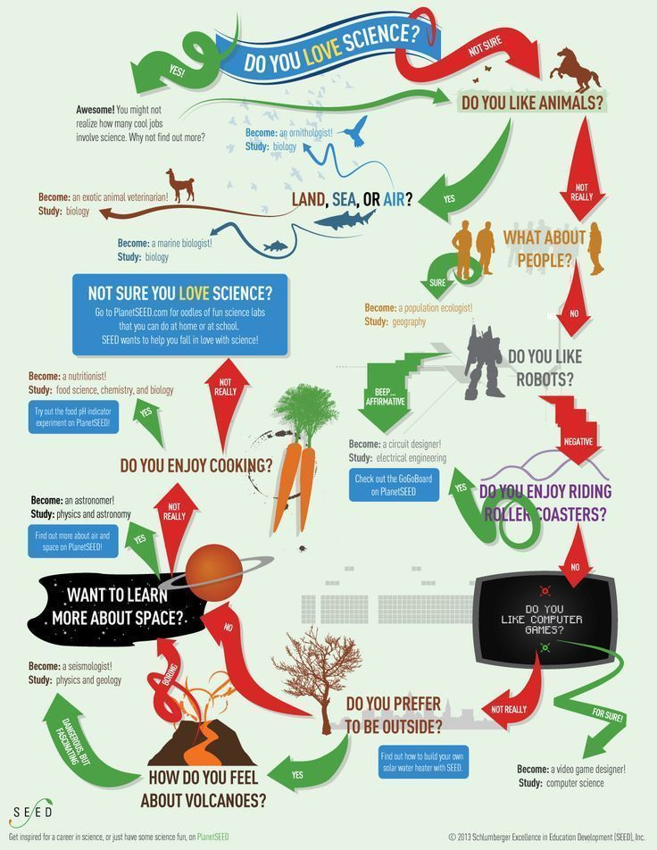 Science Careers For Students An Infographic To Lead Students To