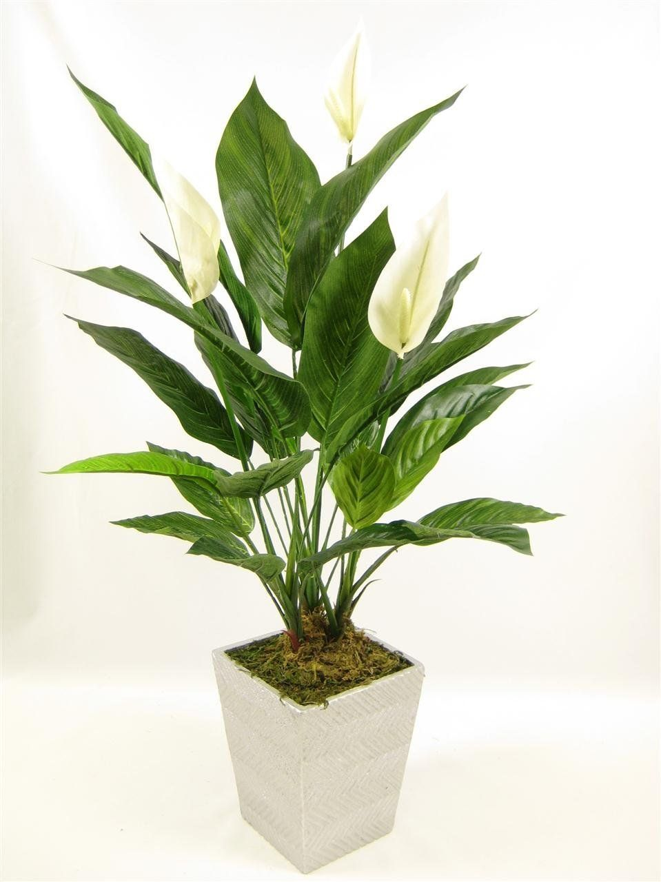68cm Potted Artificial Silk Cream Peace Lily ...