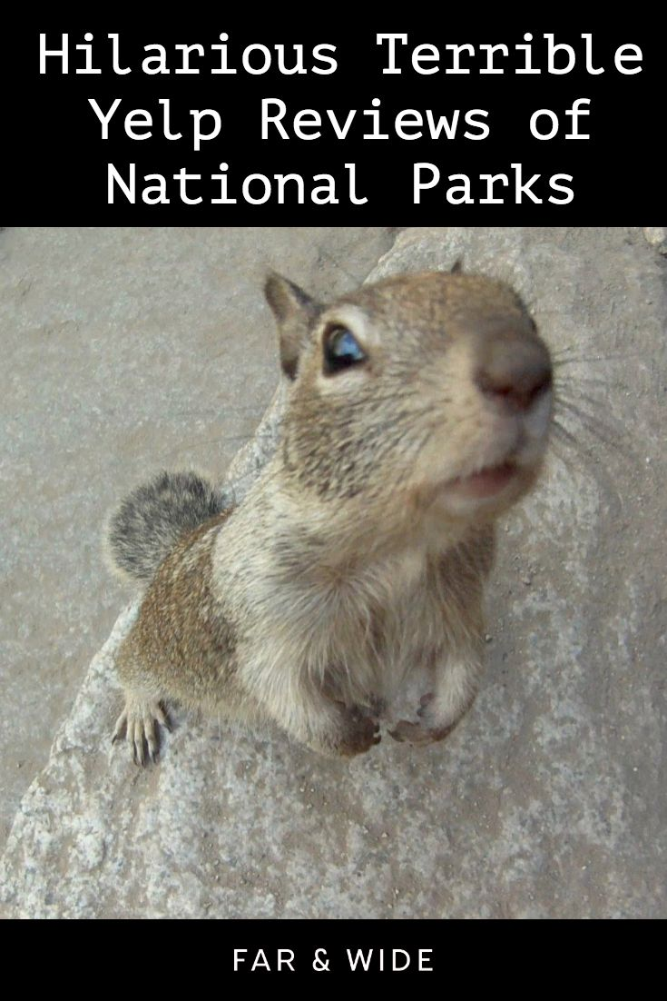 Hilarious Terrible Yelp Reviews of National Parks Cute