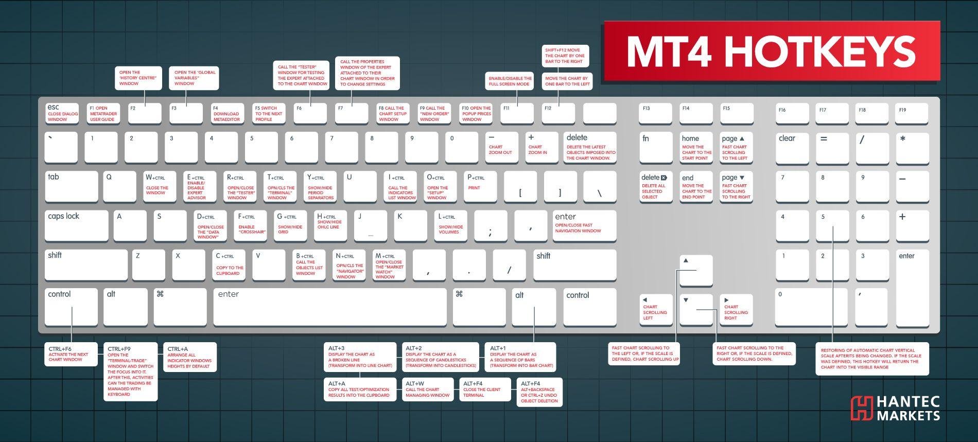 MT4 HOTKEYS Infographic Infographic, Technical analysis