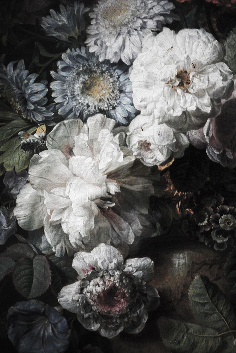 Black floral print wallpaper dark floral wallpaper by ellie cashman - Dark Floral Mural Floral Wallpaper Vintage Illustration 108