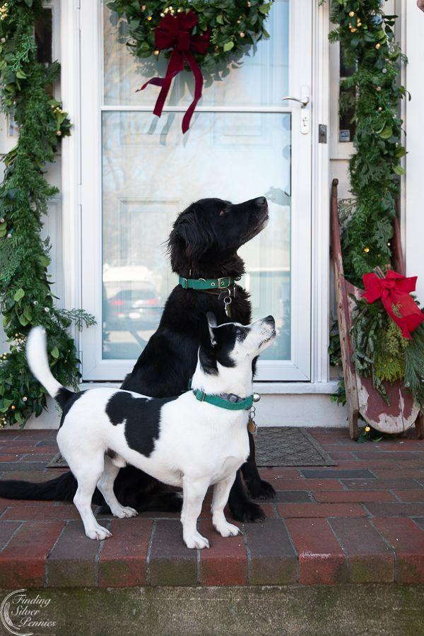 A Classic New England Christmas (Holiday Housewalk ...