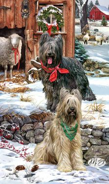Briard Christmas Guardians By Margaret Sweeney Hunde