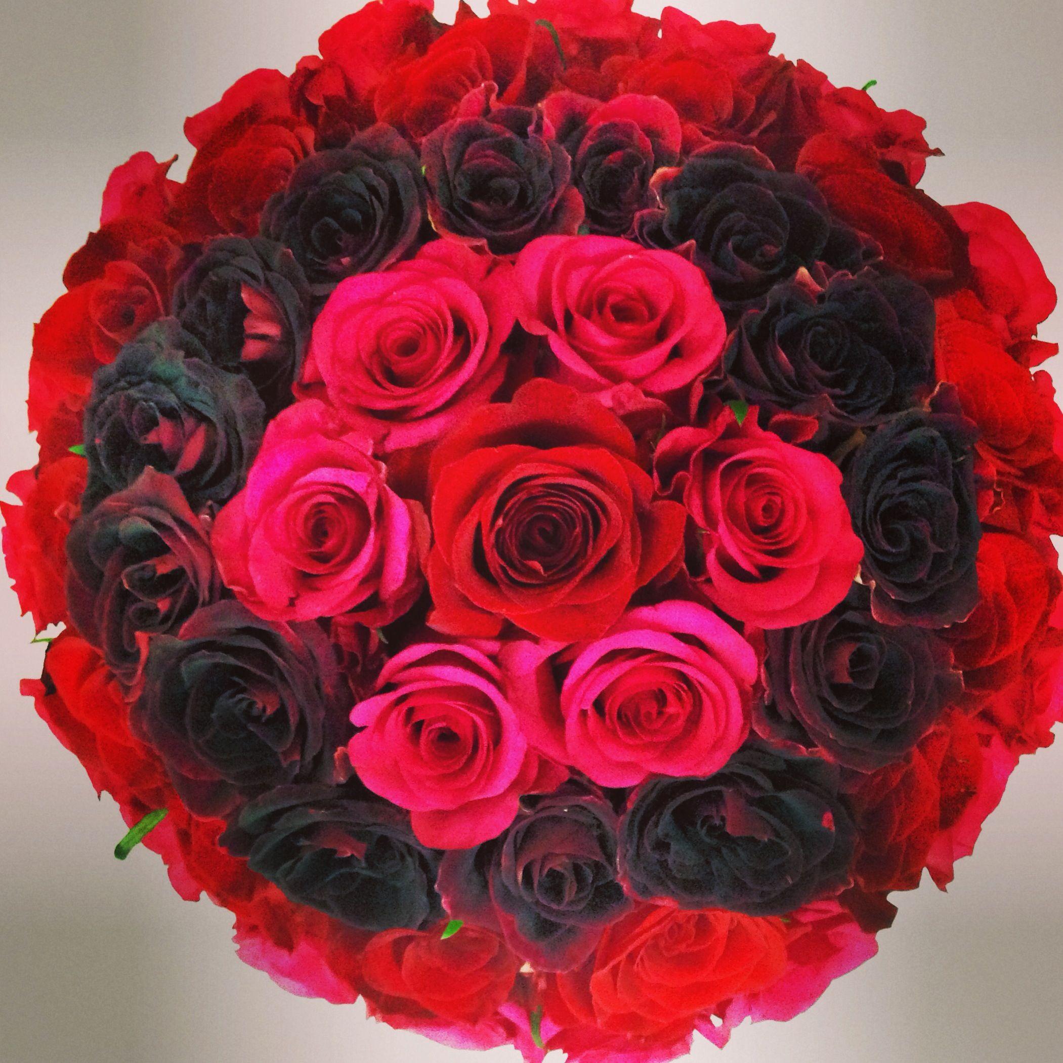 Biedermeier love roses an unique ombre color progression luxury an unique ombre color progression luxury bouquet of five dozen premium roses by gabriela wakeham floral design in new york city izmirmasajfo