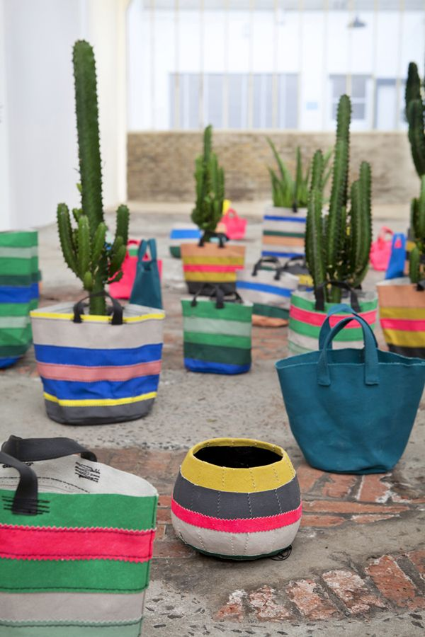 Cactus Planters. Mexican Interior DesignYouth ...