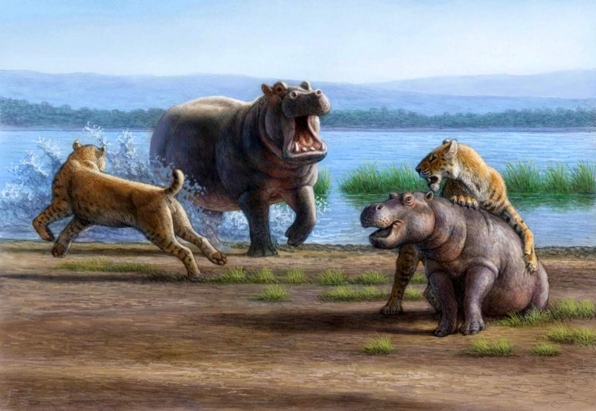 extinct animals