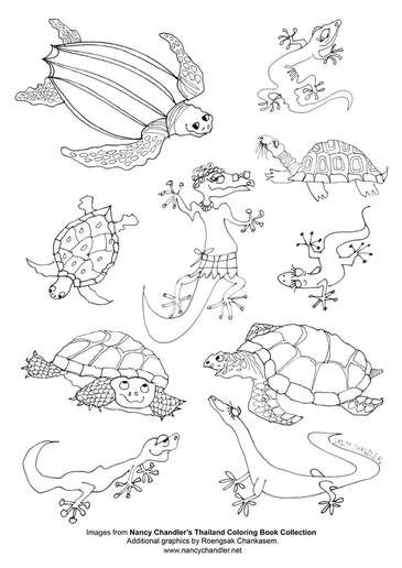Free Thailand Themed Coloring Pages And Activity Sheet Downloads