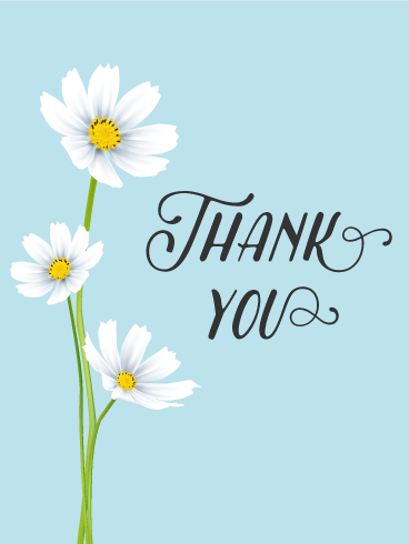 White Cosmos Thank You Card. Saying