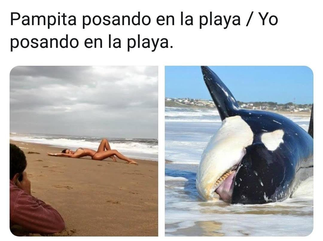 Pin De Momazos V En Imagenes De Memes En Espanol Imagenes Chistosas Memes Chistoso