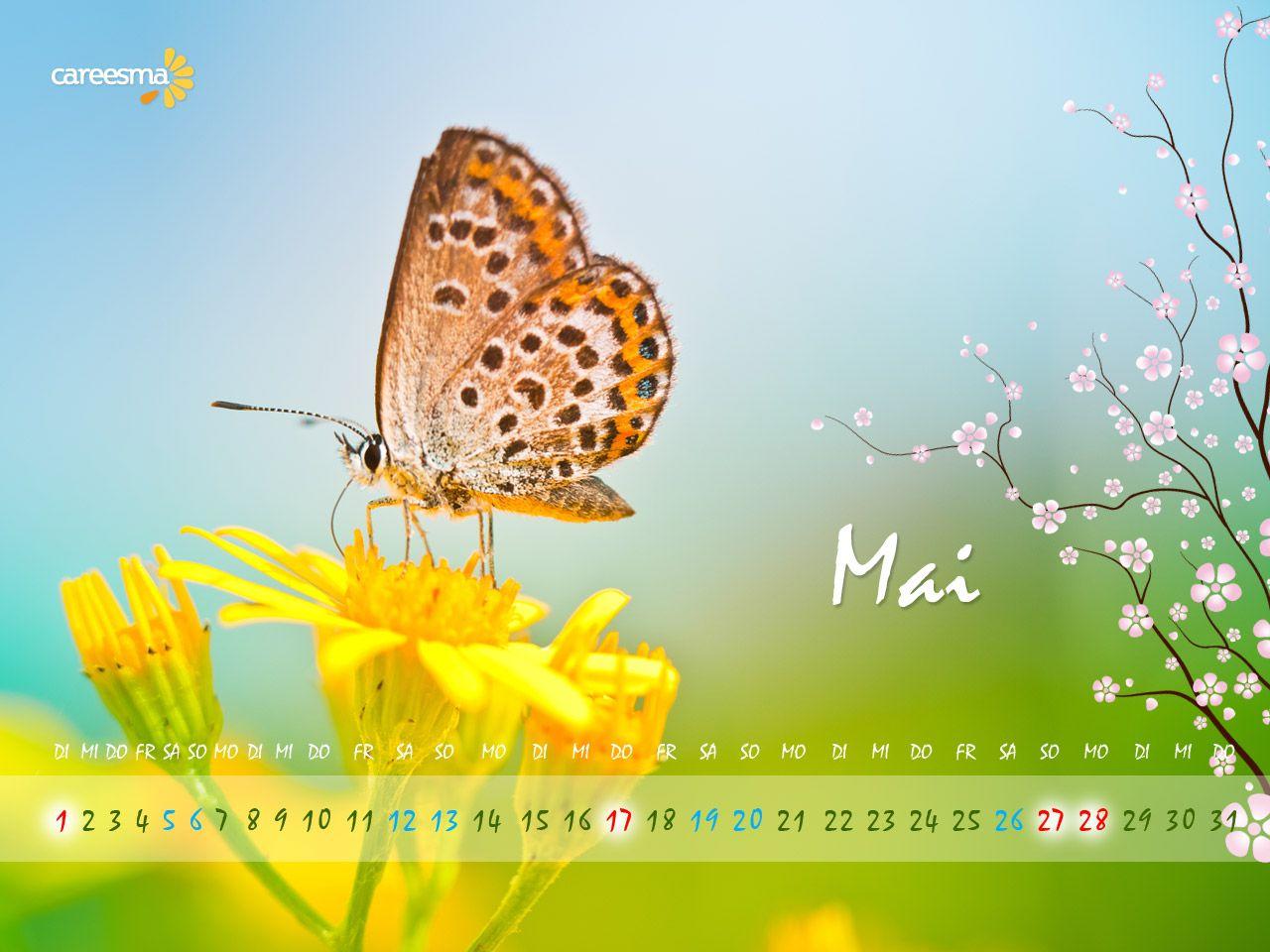 Monat Mai