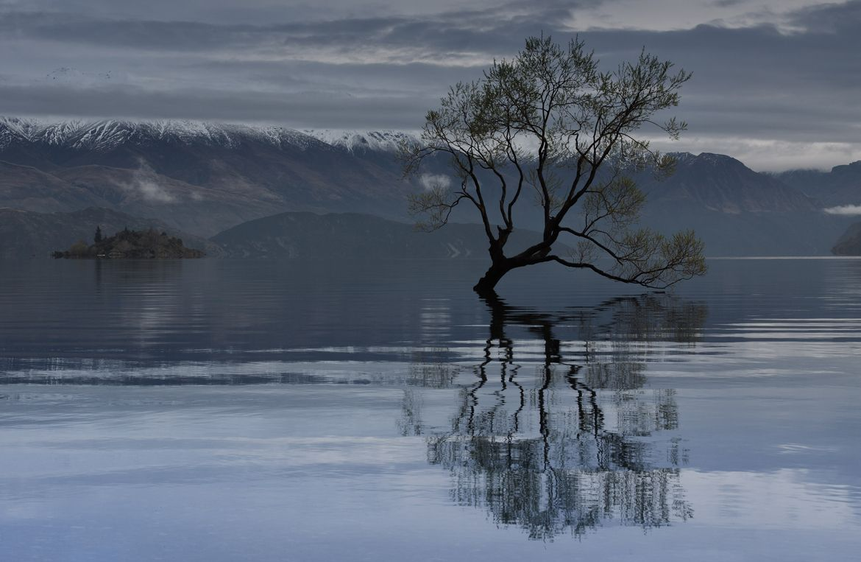 """Reflexões"" Fotografía  de Jason Rosewarne na 500px"