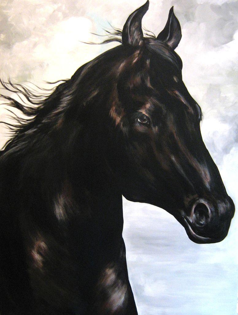 https://flic.kr/p/3crp8i   cavalos   cavalo negro medindo 120 x 90