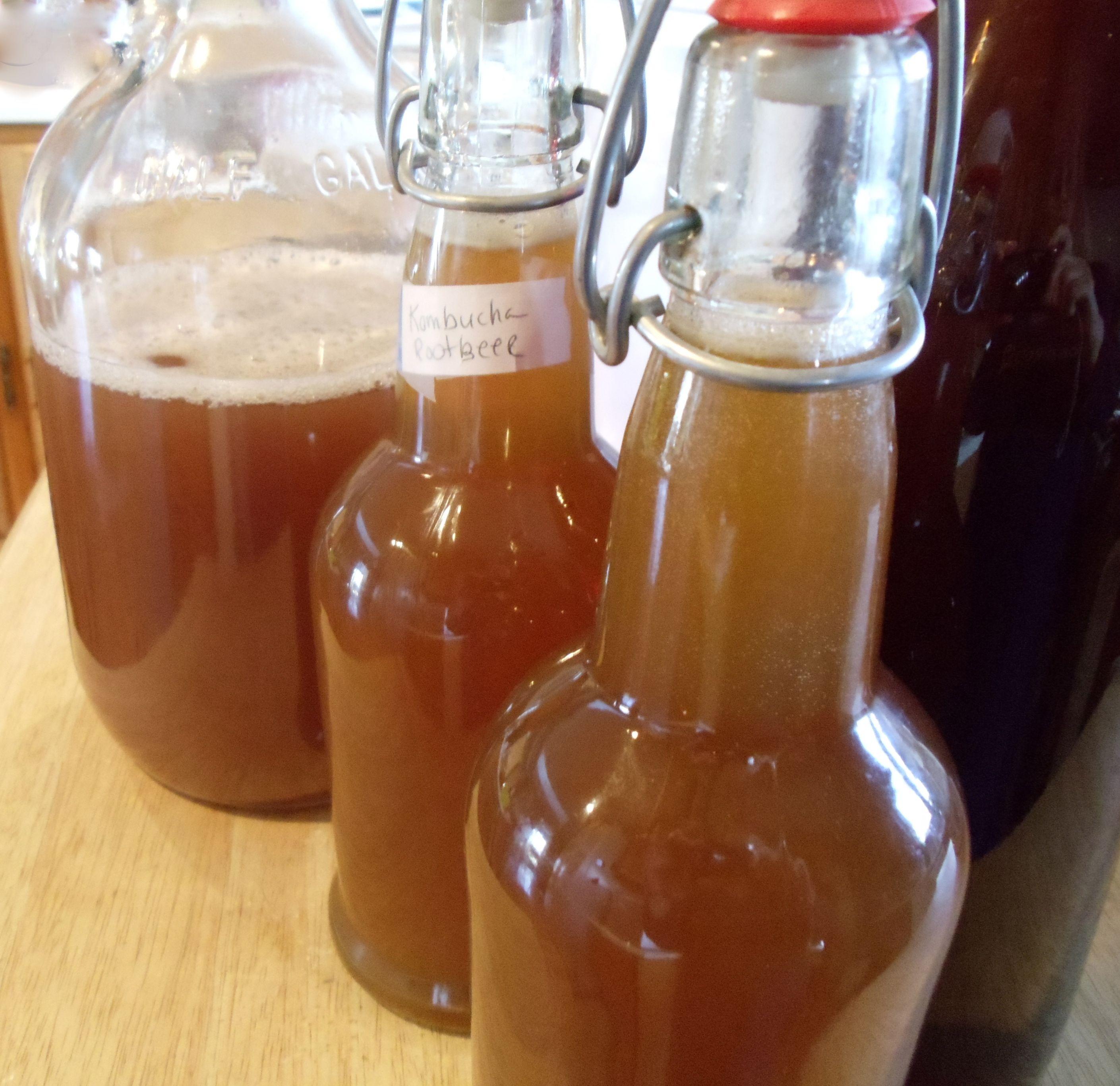 Root Beer Kombucha Recipe Kombucha Recipe Kombucha Kombucha Culture