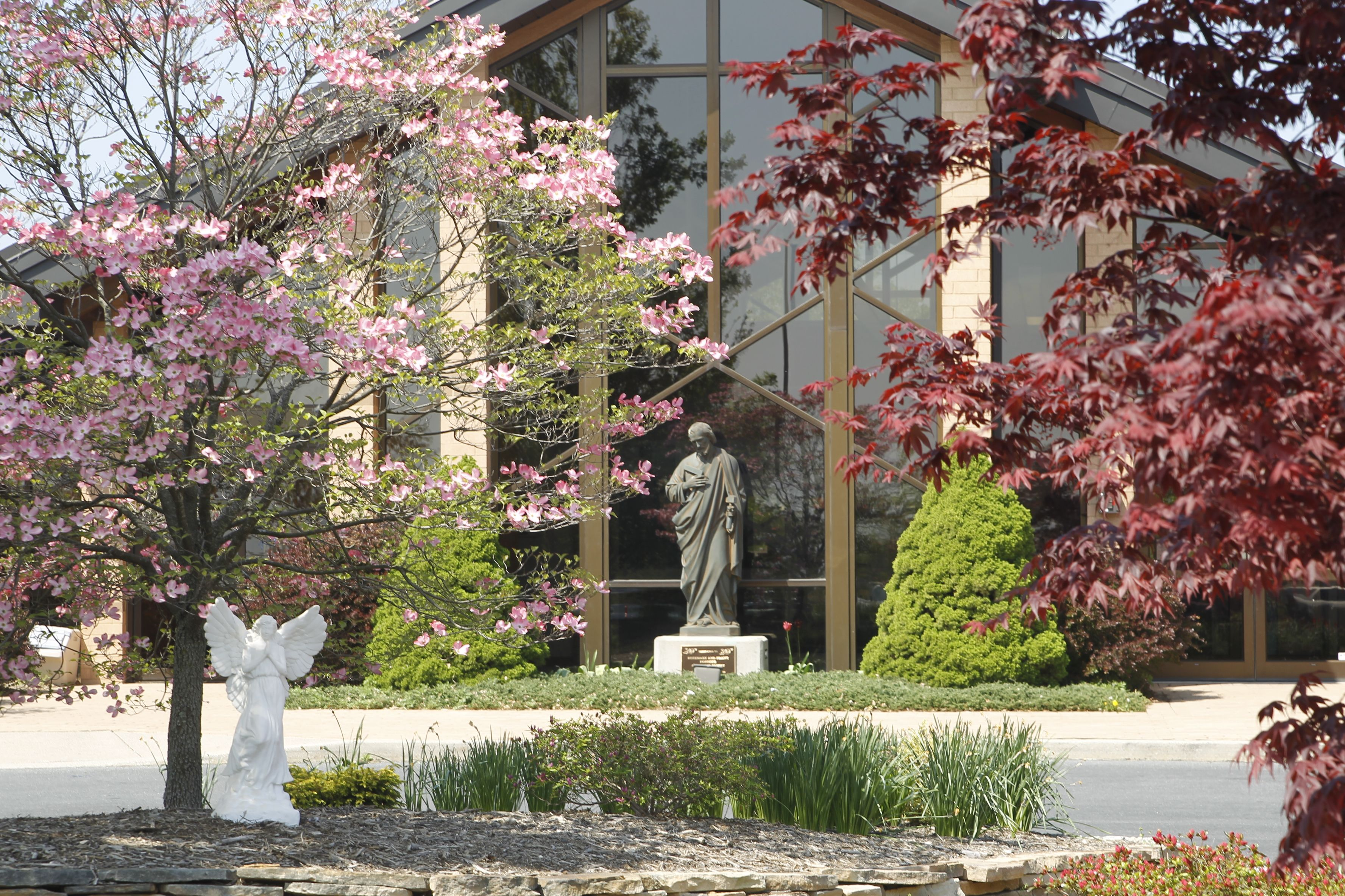 St Joe S In Spring