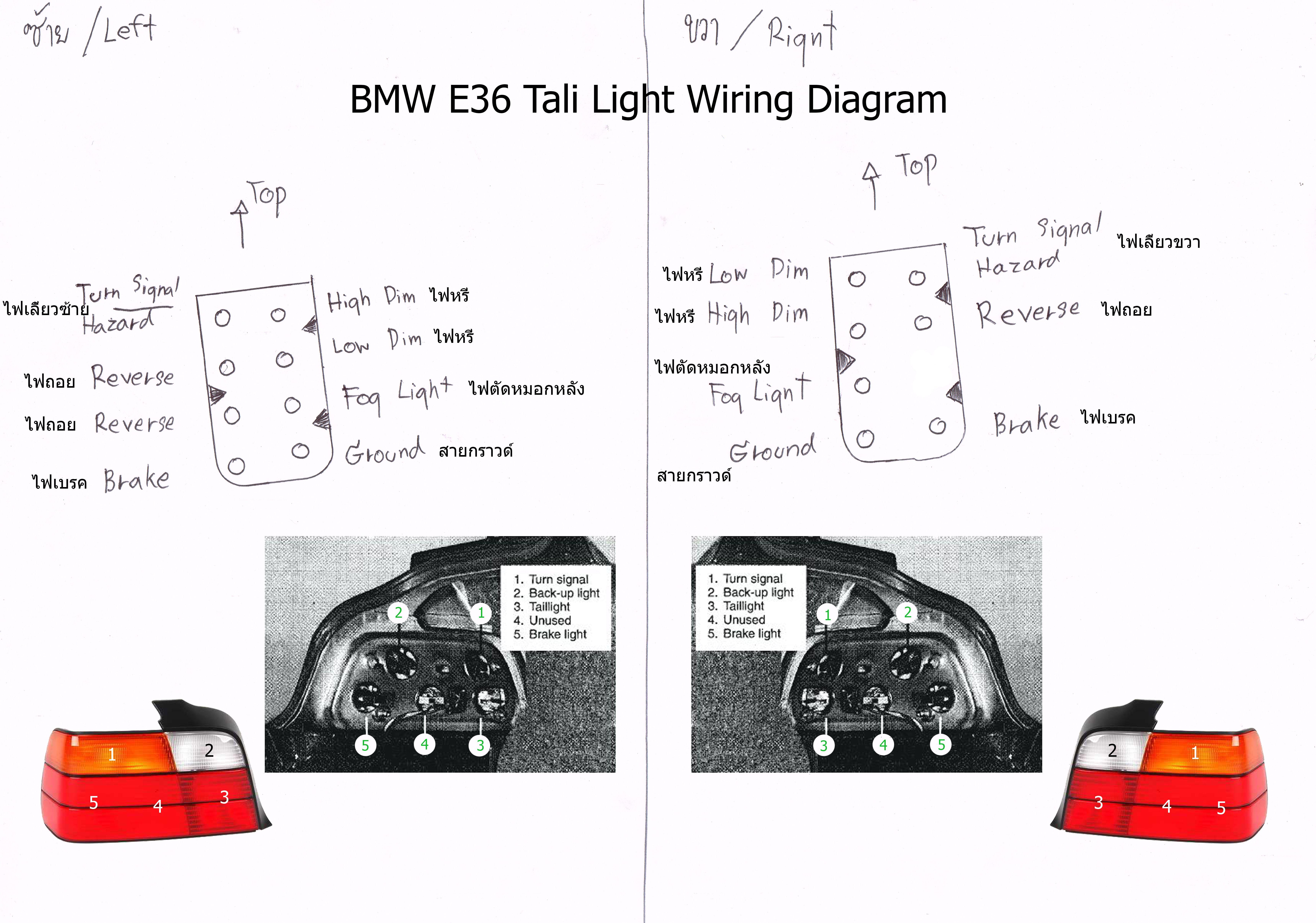E36 Tail Light | Tail light, LightPinterest