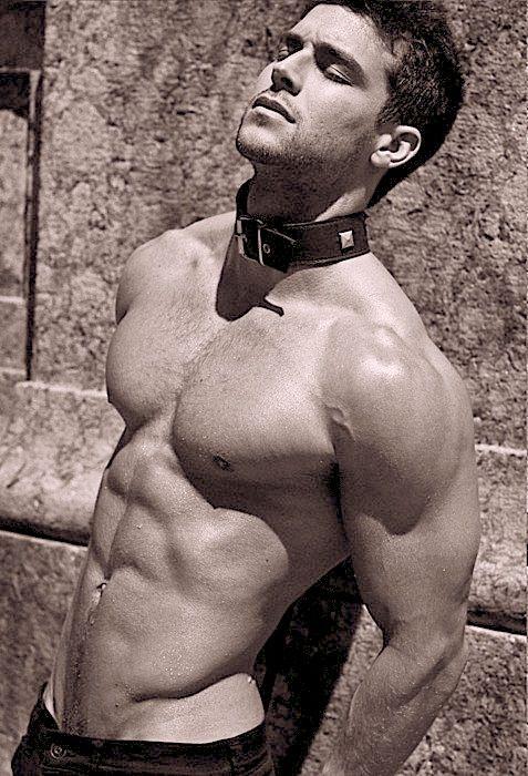 Gay Muscle Slaves 67