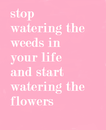 Start watering the flowers