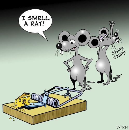 Image result for smell a rat cartoon