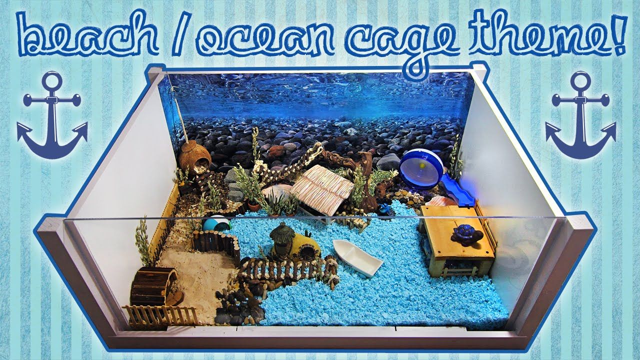 Beach Ocean Hamster Cage Theme Hamster Cage Hamster Diy Dwarf Hamster Cages