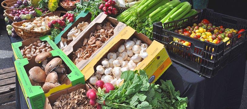 3rd Tuesday Is A Market Day Harvest For Health Farmers Market In Cortlandt Manor New York 11am 4pm Https Www Far Farmer Health