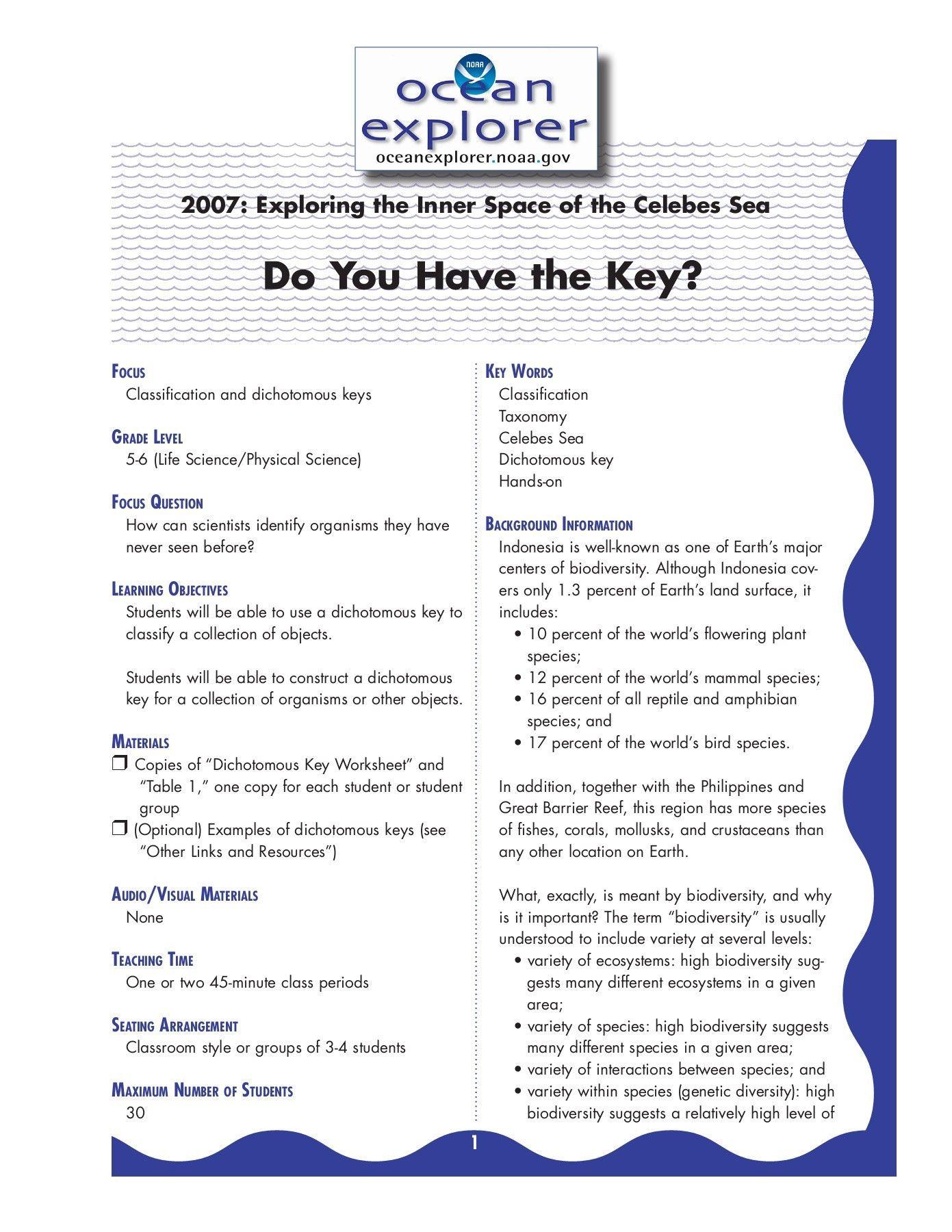 Dichotomous Key Worksheet In