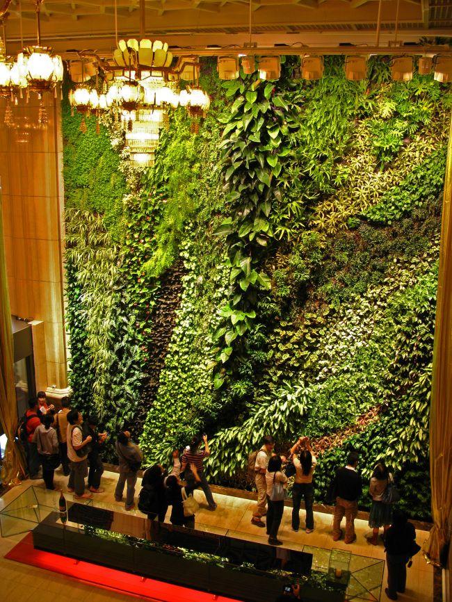 Una historia de los jardines verticales de vi as simples a for Historia de los jardines verticales