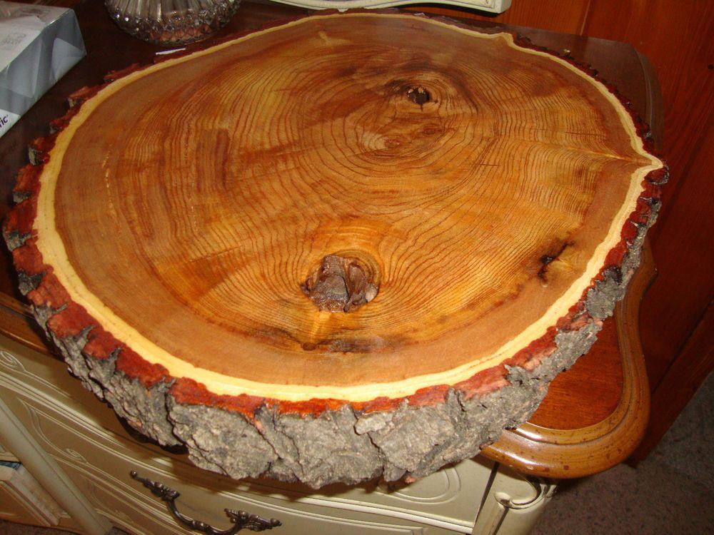 Round Live Edge American Mahogany Slab 16 Wood Tree Slice Table Top Natural Wood Tree Slice Tree Slices Mahogany