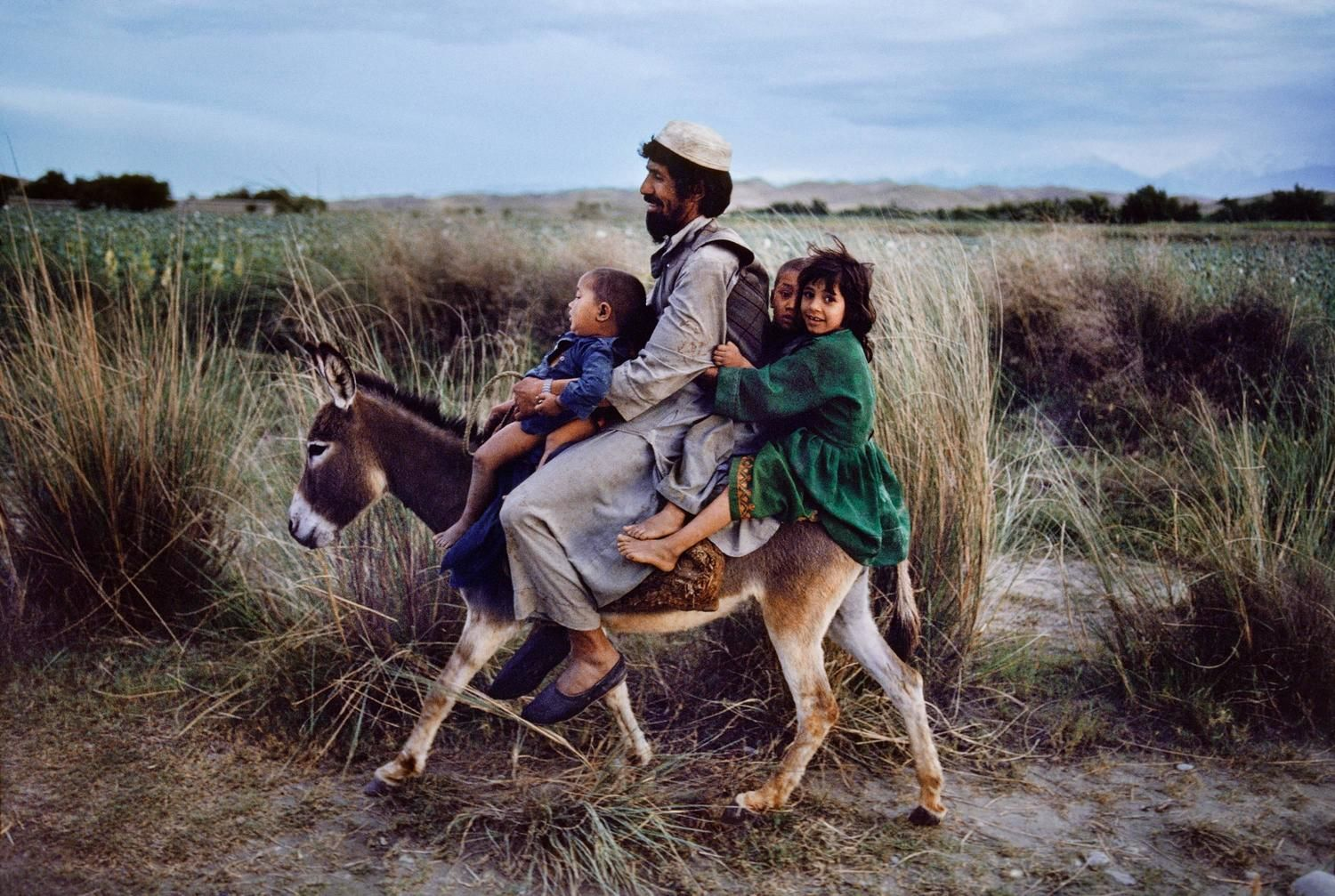 Steve McCurry . Family Rides Donkey, Afghanistan, 2003