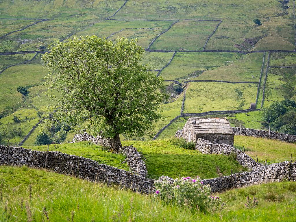 outdoormagic: Swaledale Scène par Bobrad