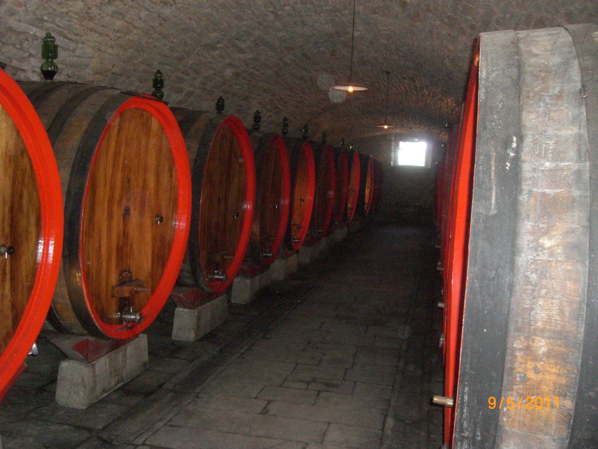 Castello Di Albola Wine Cellar In Tuscany