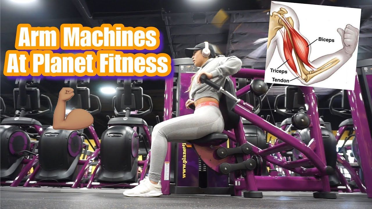 Arm machines at fitness beginner friendly in