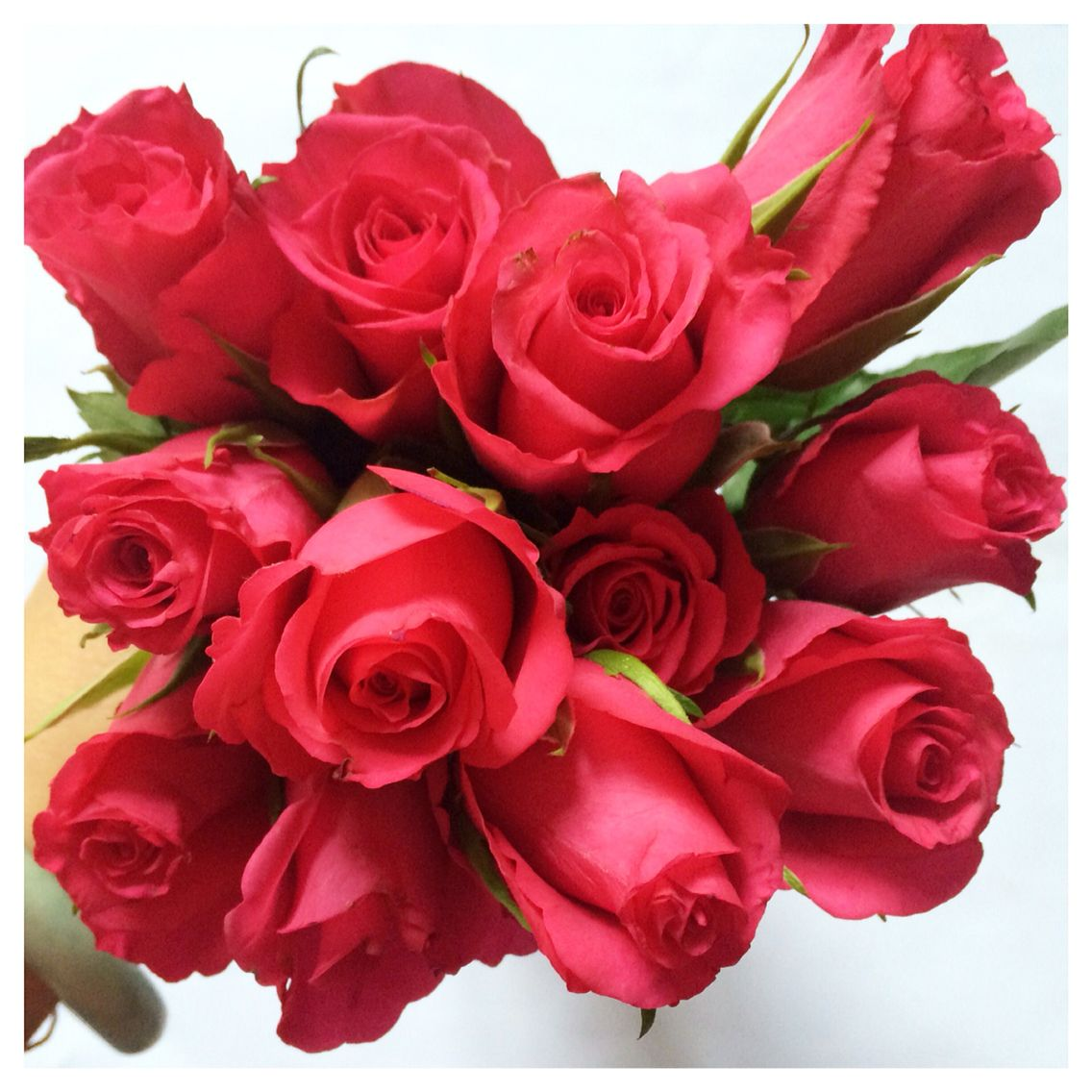 Today cheer me up purchased of beautiful red roses. #rose #red #flower #shopping #beautiful #weekend #home #plant #happy #joys #love #flowers #pretty #mood #emotion #smile