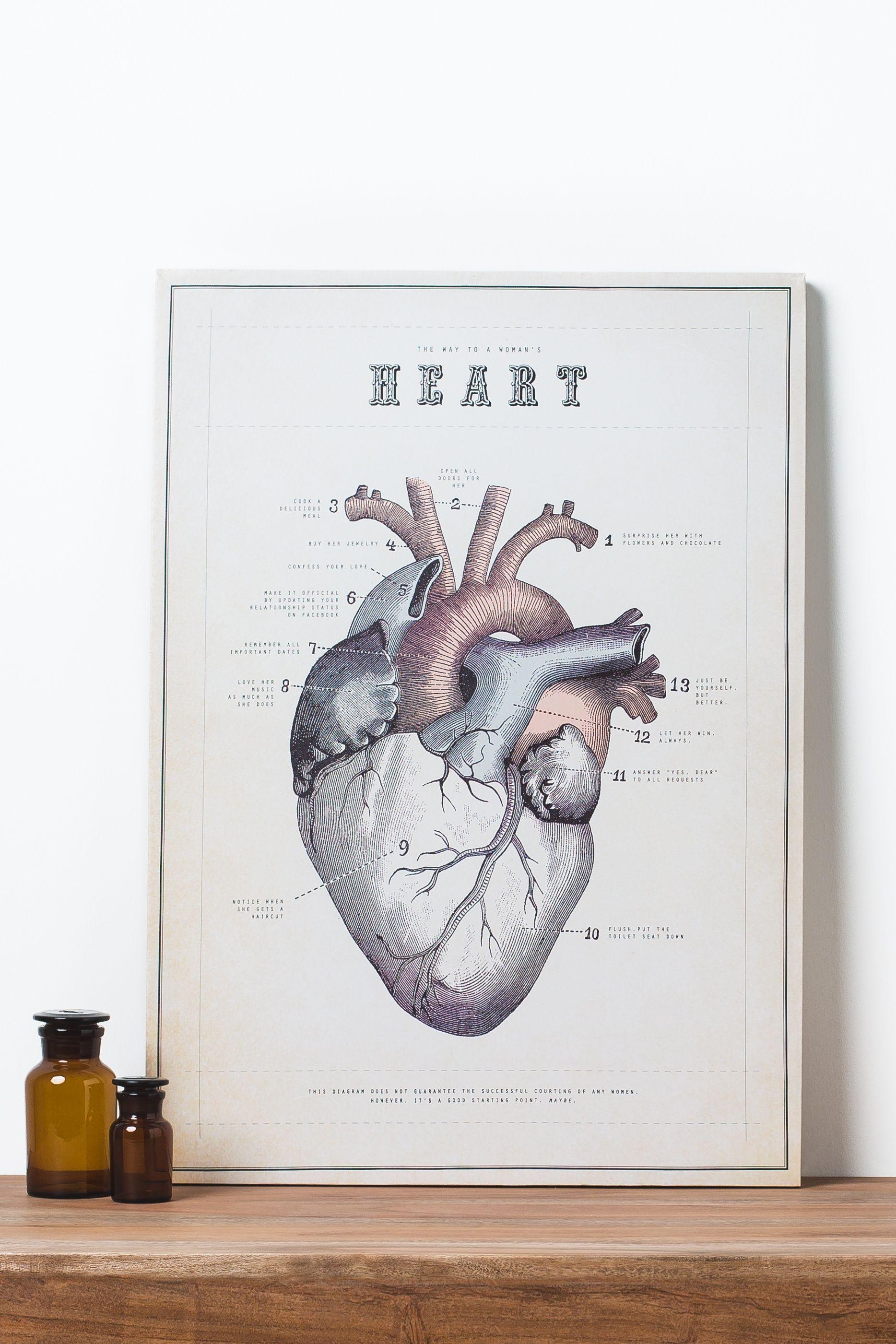 Anatomical Heart Chart Canvas Art | Think Tank | Pinterest