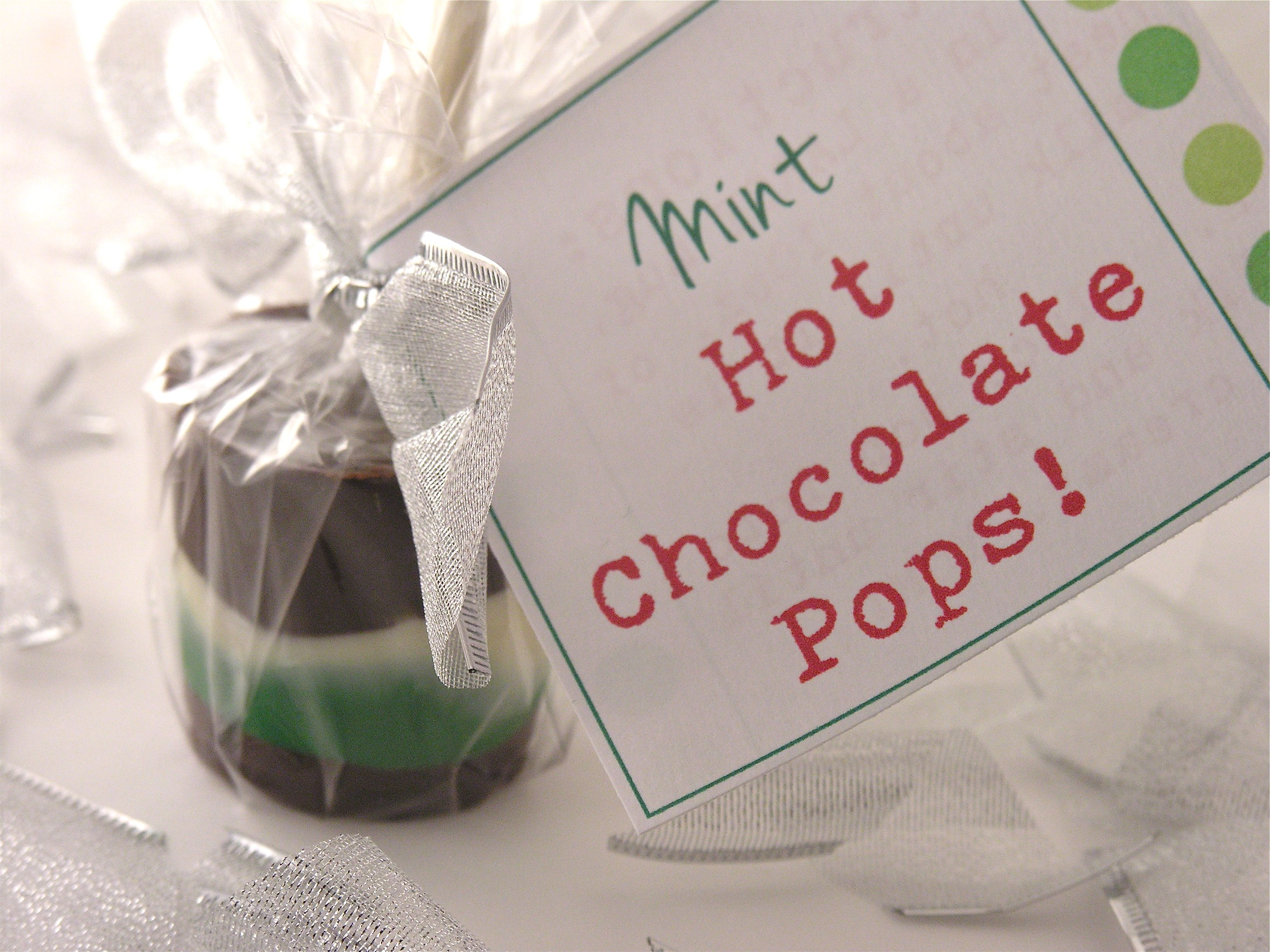Hot Chocolate Pops -- place in large cup of hot steamed milk & stir to make a delicious cup of hot cocoa! #chocolatepops
