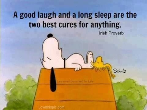 A Good Laugh And Long Sleep Life Quotes Quotes Cute Quote Cartoons