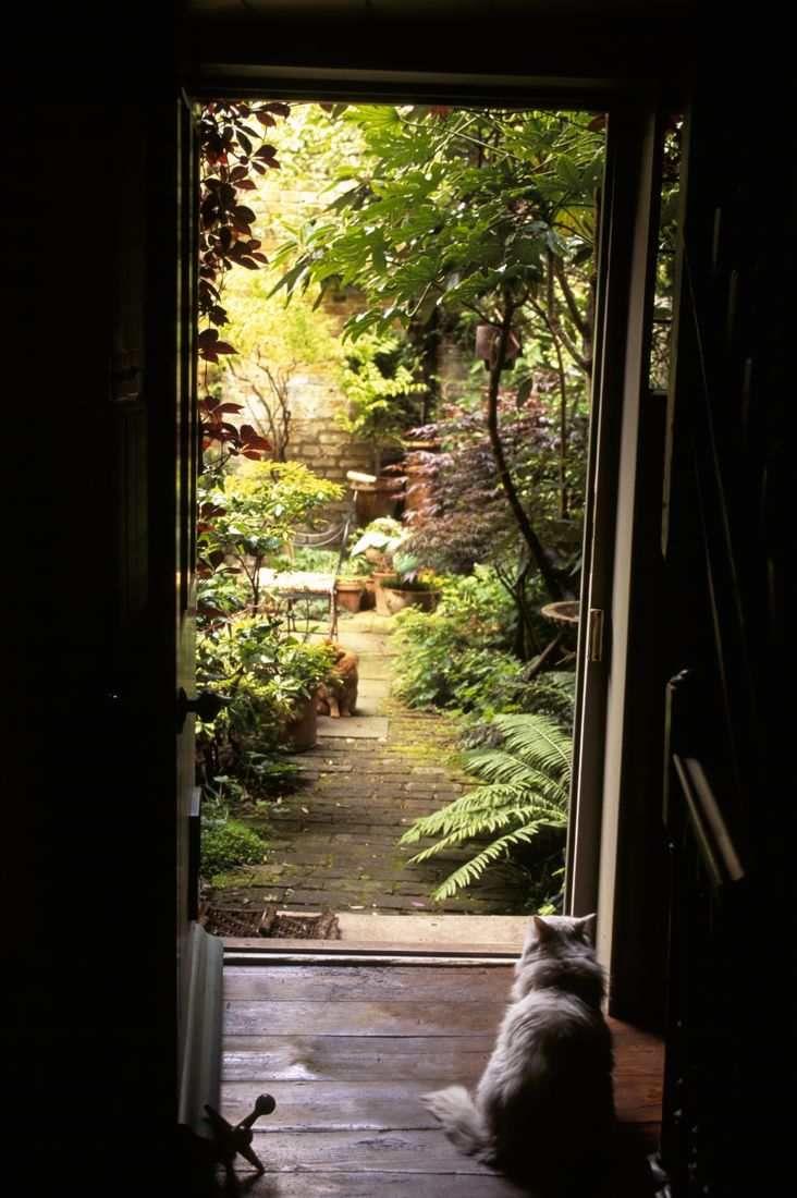 Shoreditch Gardens: If This Were My Garden, I COULD Get Into Gardening! Retro