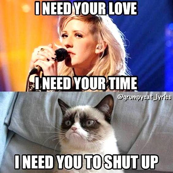 Funny Cat Memes Happy Funny Cat Memes Funny Grumpy Cat Memes Grumpy Cat Humor
