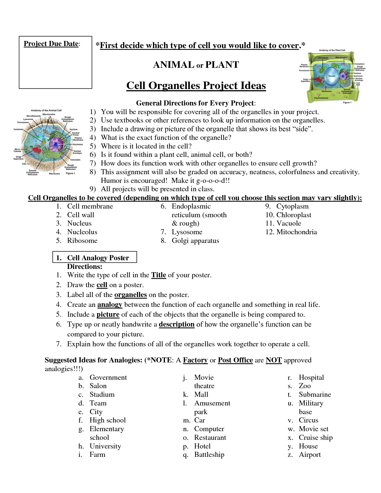 Cell project   School   Pinterest   Science cells, Cell project ...