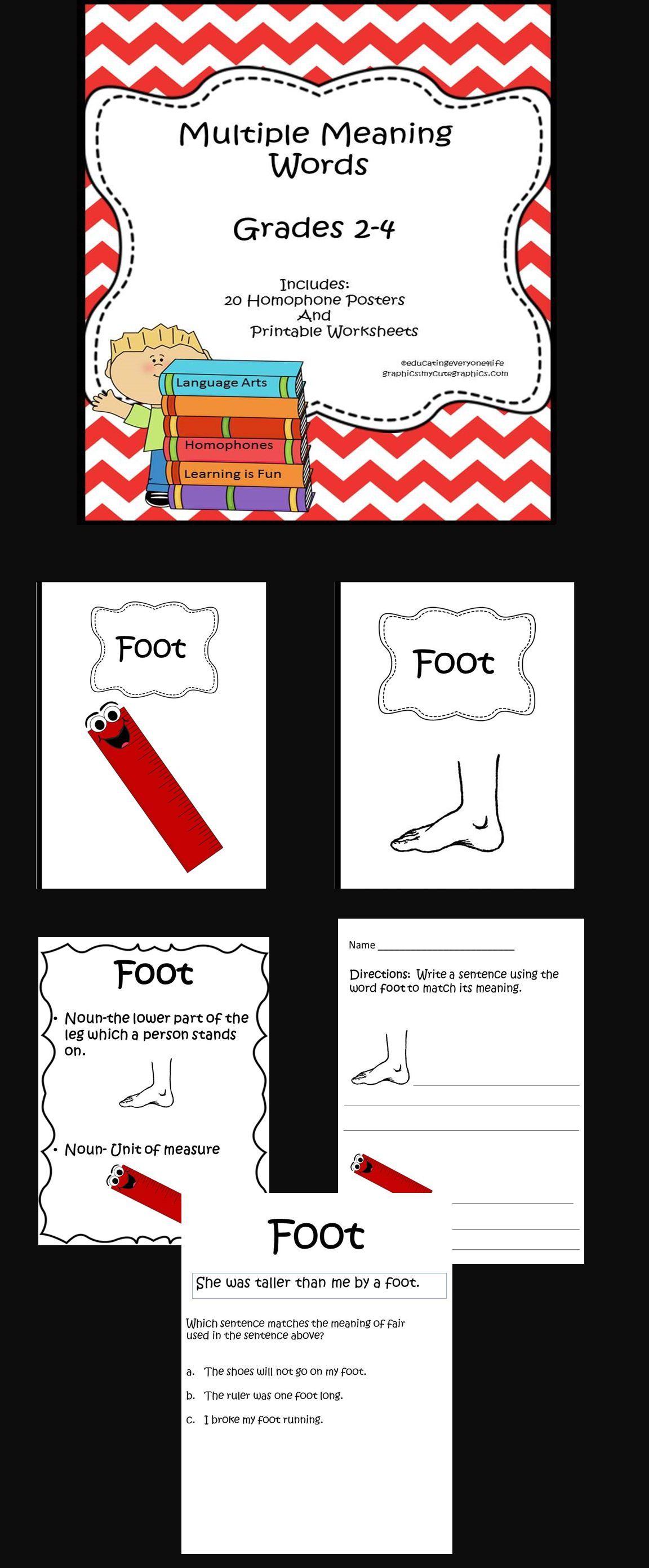 Homographs Multiple Meaning Words Grades 2 4 Reading
