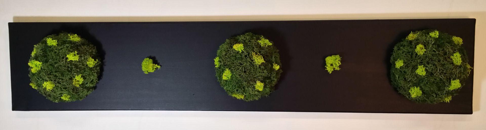 tableau v g tal stabilis 20 x 100 cm 3 demi sph res lichen bicolore 011 d corations murales. Black Bedroom Furniture Sets. Home Design Ideas