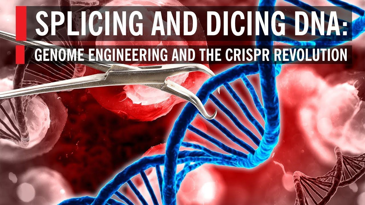 Splicing and Dicing DNA Genome Engineering and the CRISPR