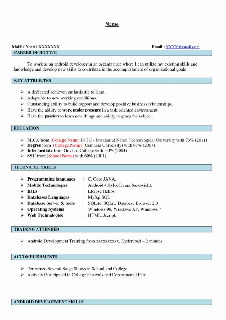 resume summary sales