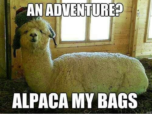 Time for an adventure! I'm packing my bags and getting ready to move. I hope you'll come along!
