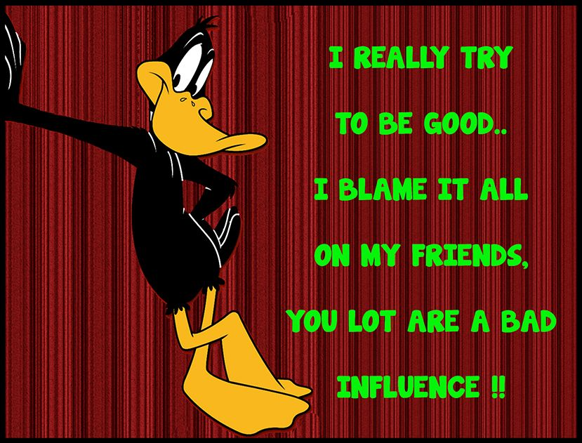 Daffy Duck ~ Quote ~ Funny ~ Friendship ~